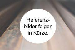 Referenzbilder_folgen_in_Kuerze
